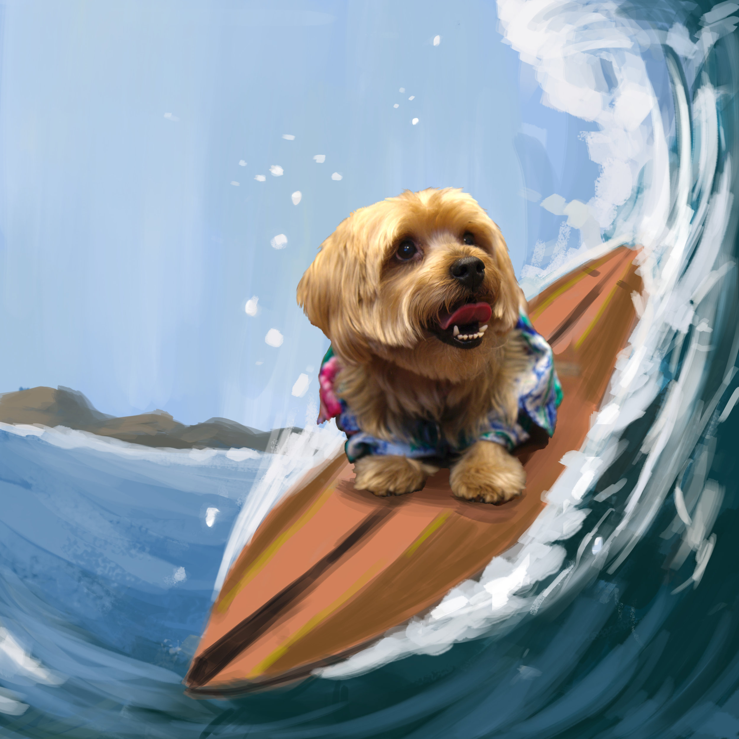 29_Fun Picture Surf.jpg