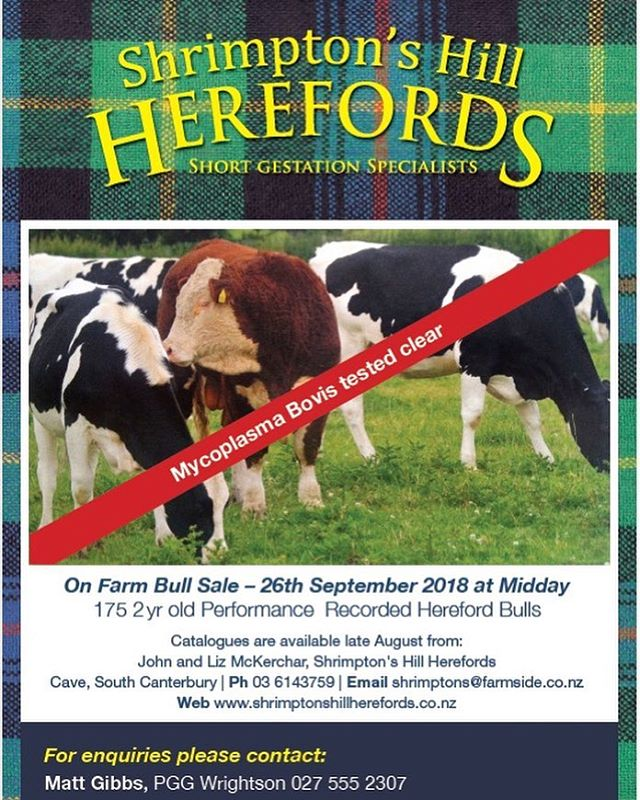 HOLY HEREFORD, THE SALE'S NEXT MONTH