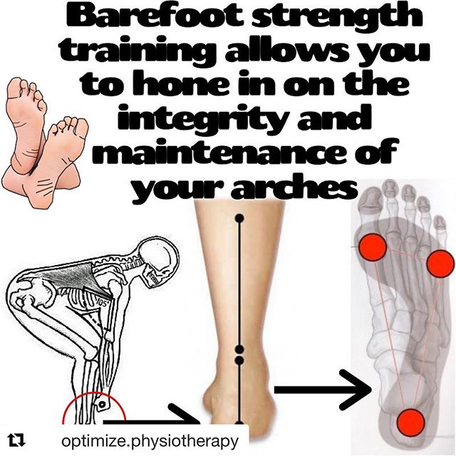 #Repost @optimize.physiotherapy with @get_repost ・・・ Barefoot strength training ✔️ ⬇️ The foot is your foundation. The human body must balance its mass over two small bases of support we call feet. The foot arch is what allows us to distribute load and maintain balance/stability over these small bases of support. 👣 An arch indicates balance and stability. When you require stability on the ground, your arches are like a compass that tell you how well you are positioning yourself and using your neuro-musculoskeletal system to keep your body balanced over your feet. ⬇️ Strength training while barefoot allows you to hone in on arch integrity. • It cuts out all of the barriers to being able to use and organize your arches most efficiently (narrow shoes, padded shoes, unstable shoes, 'supportive' shoes etc.) • It also allows you to be highly MINDFUL of how you are using your feet. You can actually see your feet and arches, and how well you are using them. You can feel the ground and how your feet are gripping and interacting with it for stability. • You can stabilize and root to the floor more efficiently, accessing the muscles in your feet and ankles better. 🔑 All of this leads to greater potential. It allows for greater stability, and greater force production as a result. It also allows you to build your foot strength and function in the process. ✅ Train barefoot, be mindful of your feet and arches, and work to maintain them when you want stability during movements and exercises. ———————————————— #strengthtraining #training #trainer #movement #mobility #strong #strength #barefoot #balance #feet #yoga #powerlifting #weightlifting #gym #fit #fitness #fitfam #ottawa #physicaltherapy #physiotherapy #tips #crossfit #wellness #health #anatomy #squat #deadlift #weights #education
