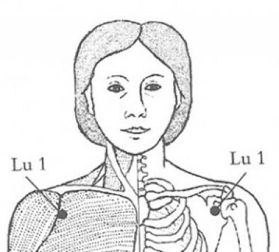 lung-01.jpg
