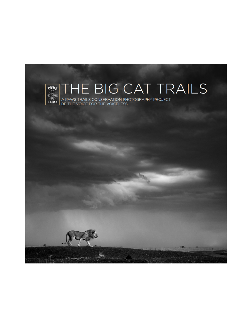 The Big cat trails published book  in the United Emirates