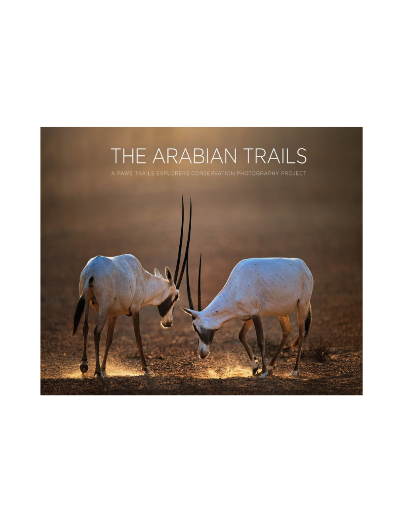 The Arabian Trails book published by The Dreamwork collective