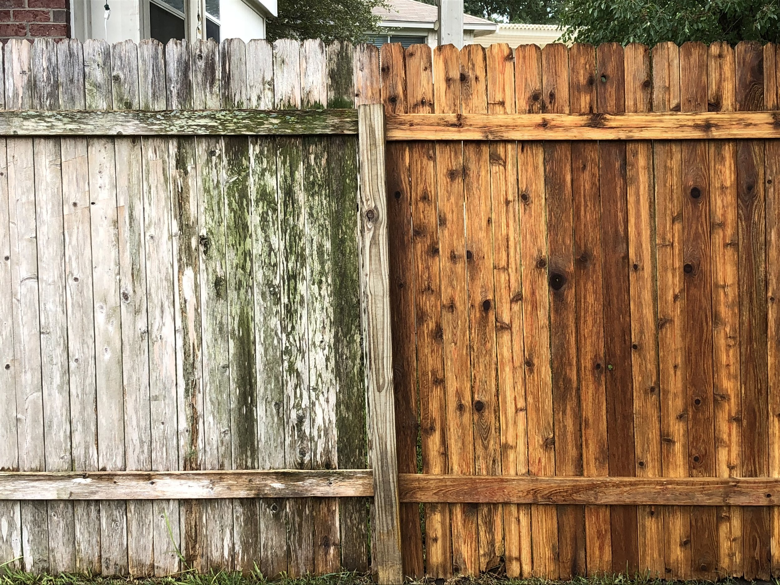 Fence Before After.JPG