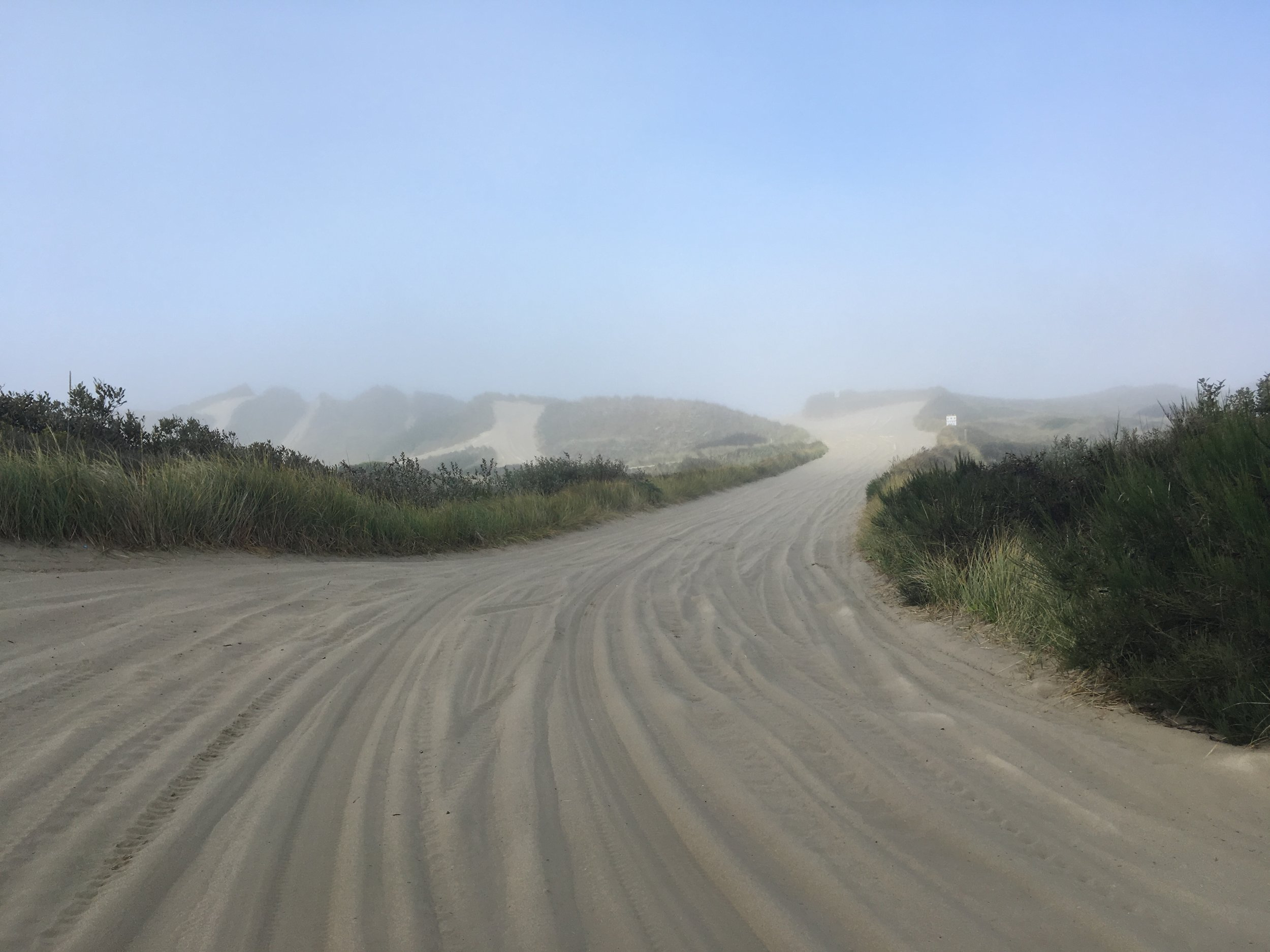 Heading into the dunes and fog!