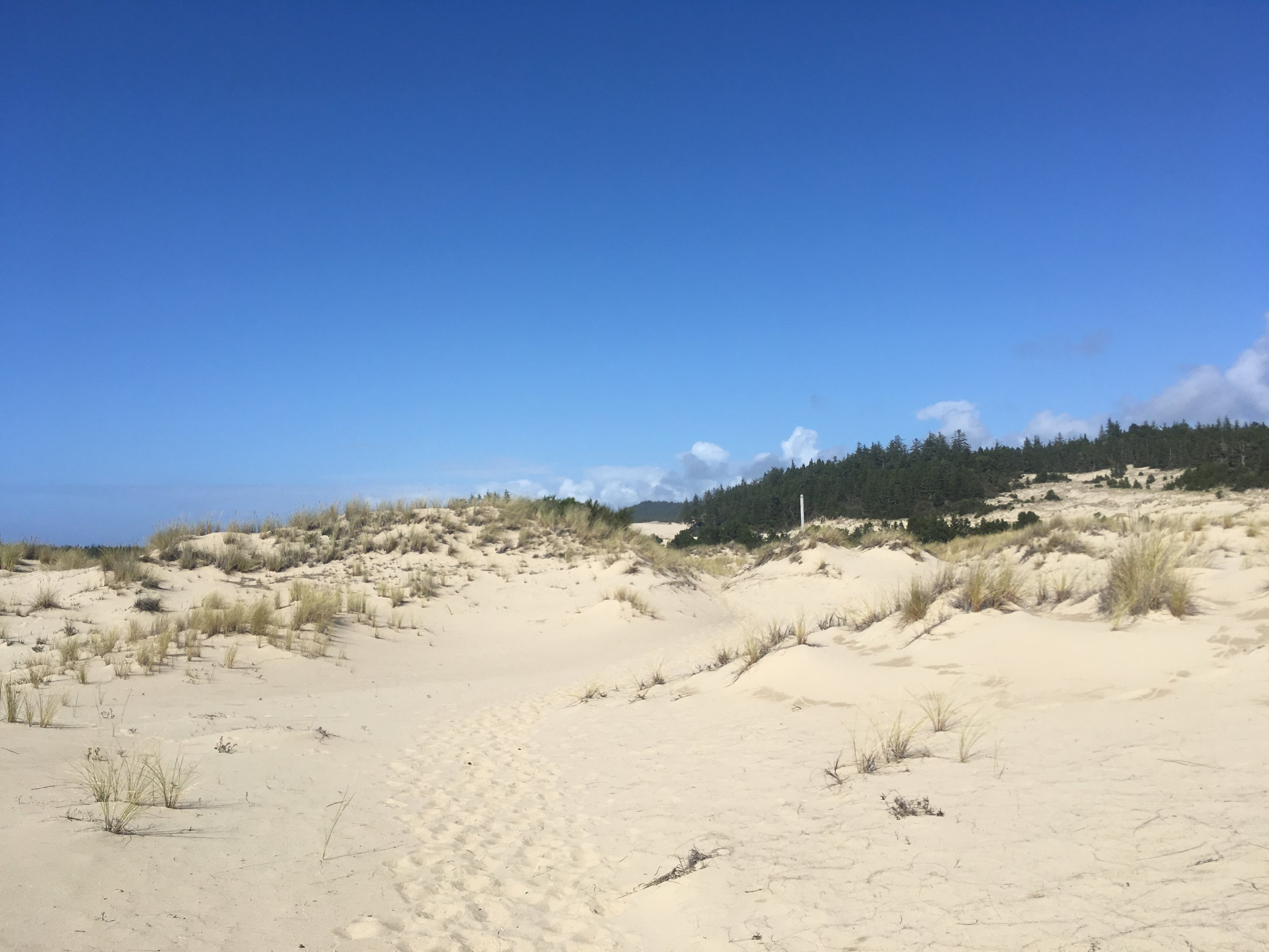 Sandy escape route