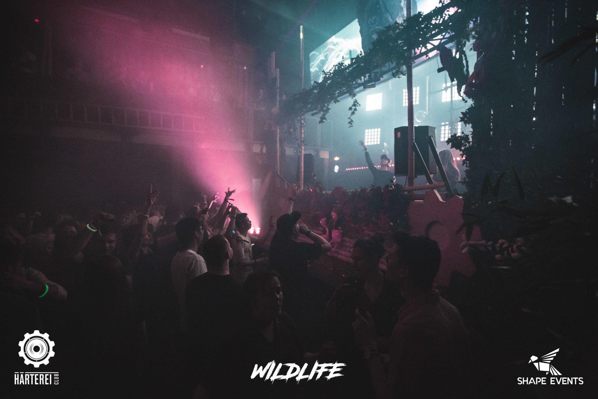 wildlife21042018_023-2560x1707.jpg