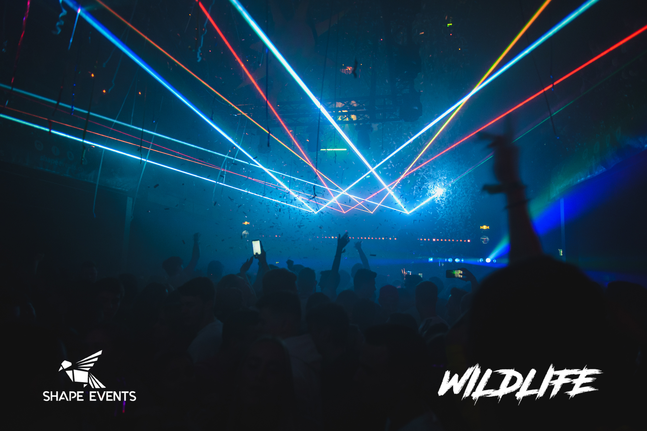 Wildlife-7.jpg