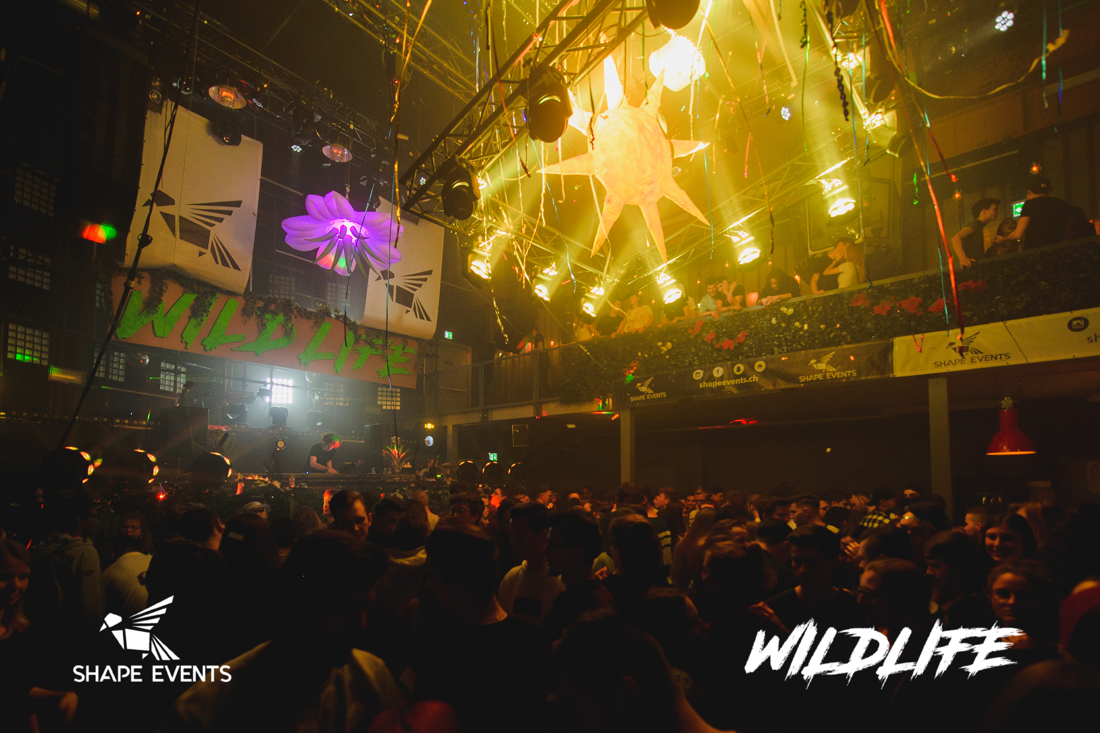 Wildlife-11.jpg