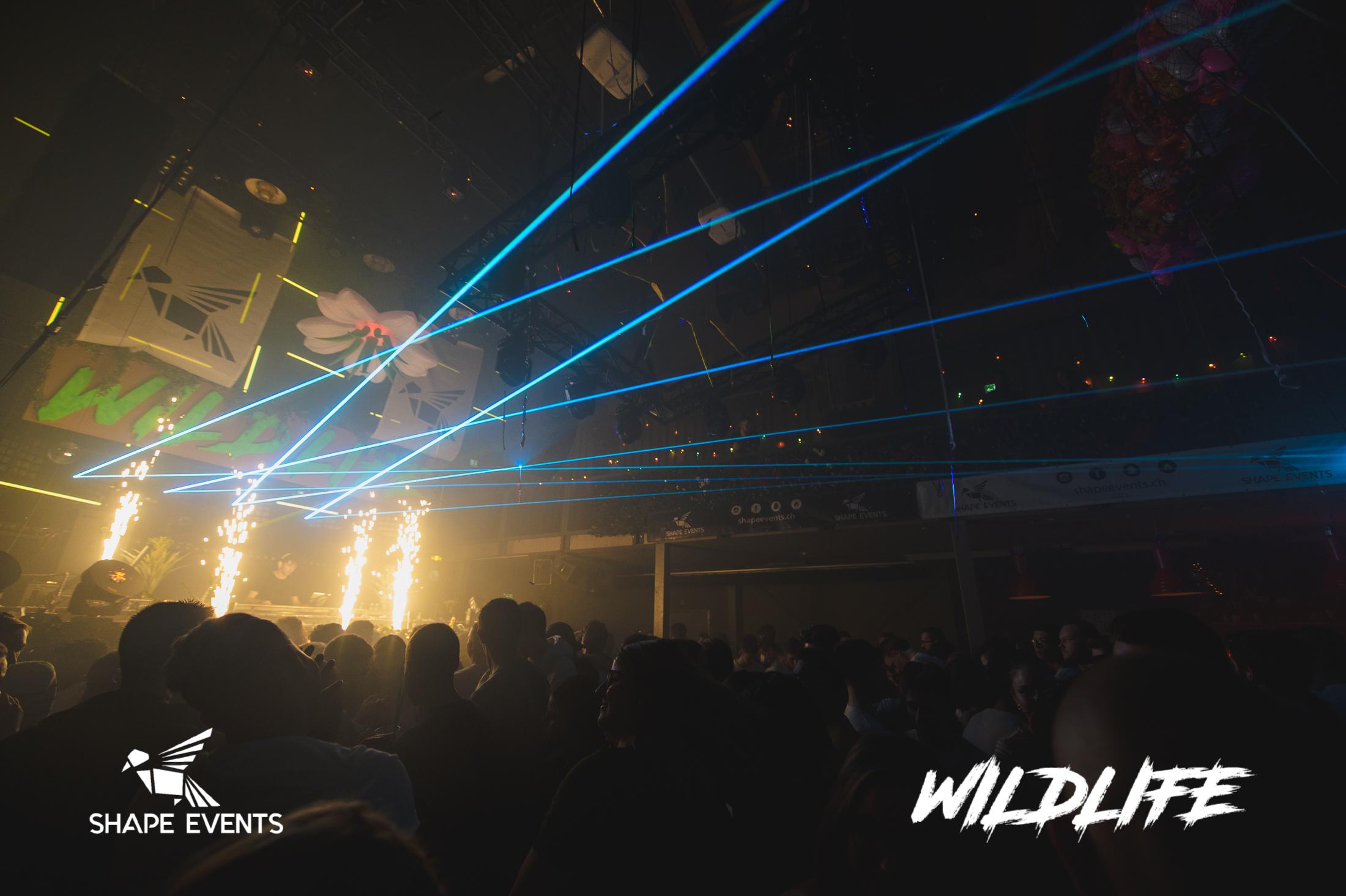 Wildlife-16.jpg