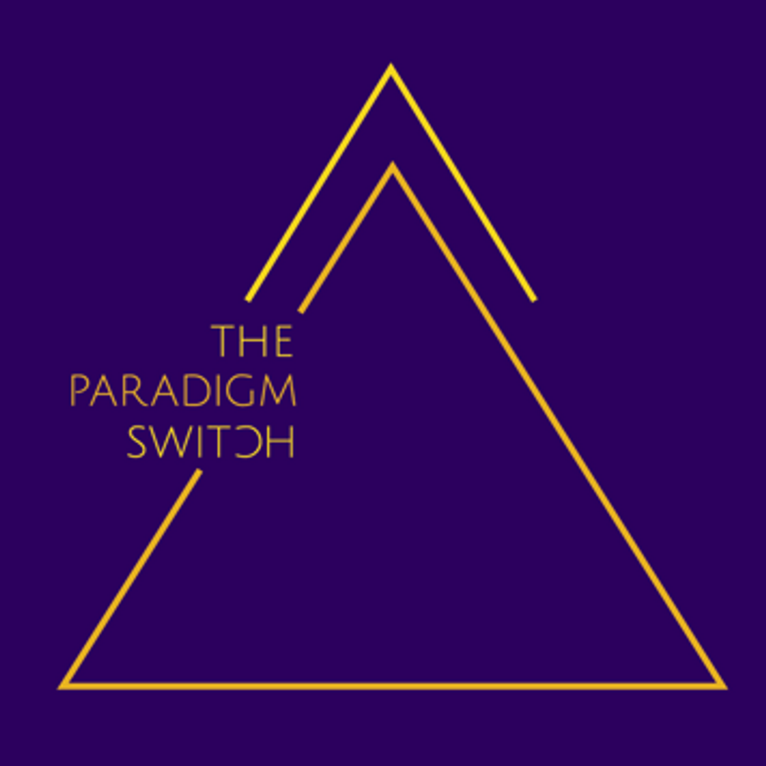 Paradigm Switch.png