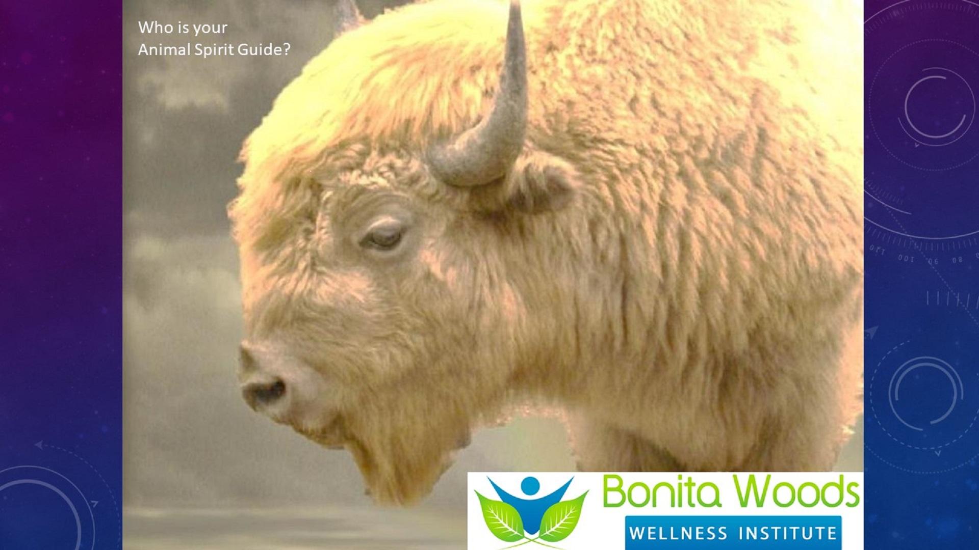 White Buffalo banner.jpg