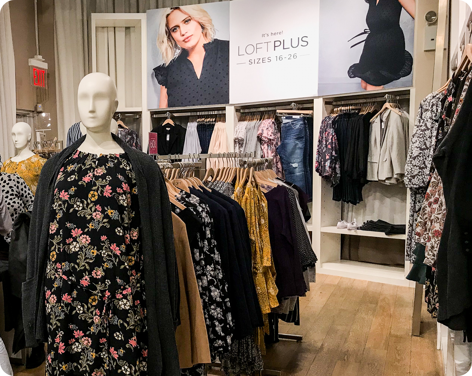 Loft Plus Size section in the back of the store