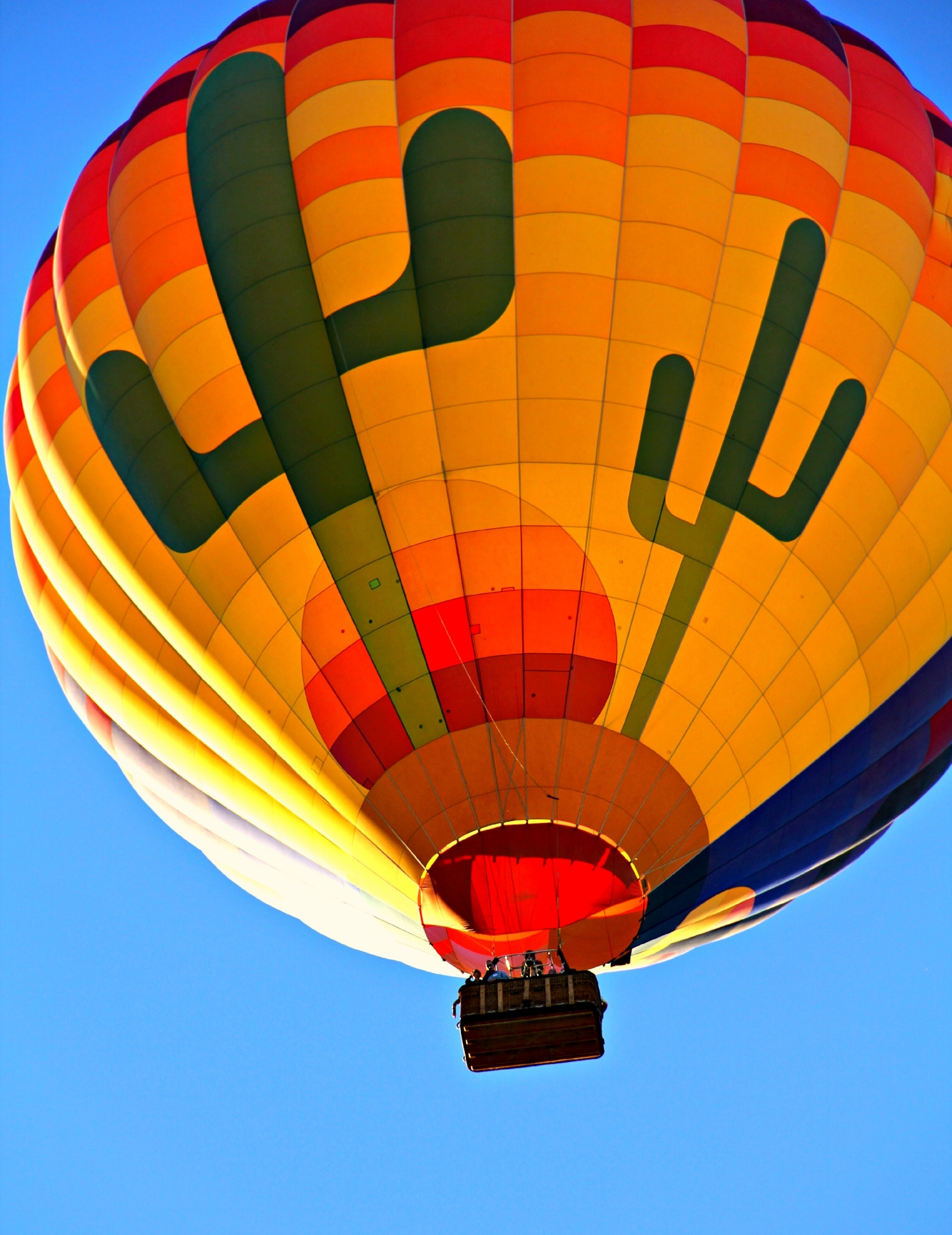 balloon-colorful-colourful-46233.jpg