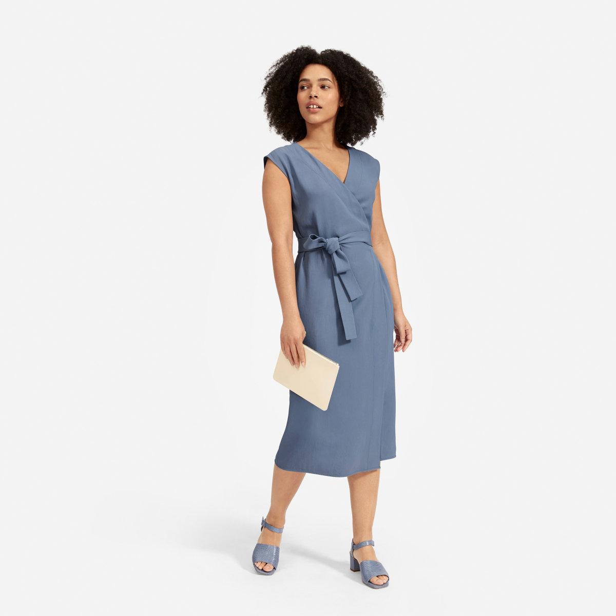 Everlane Dress, $100