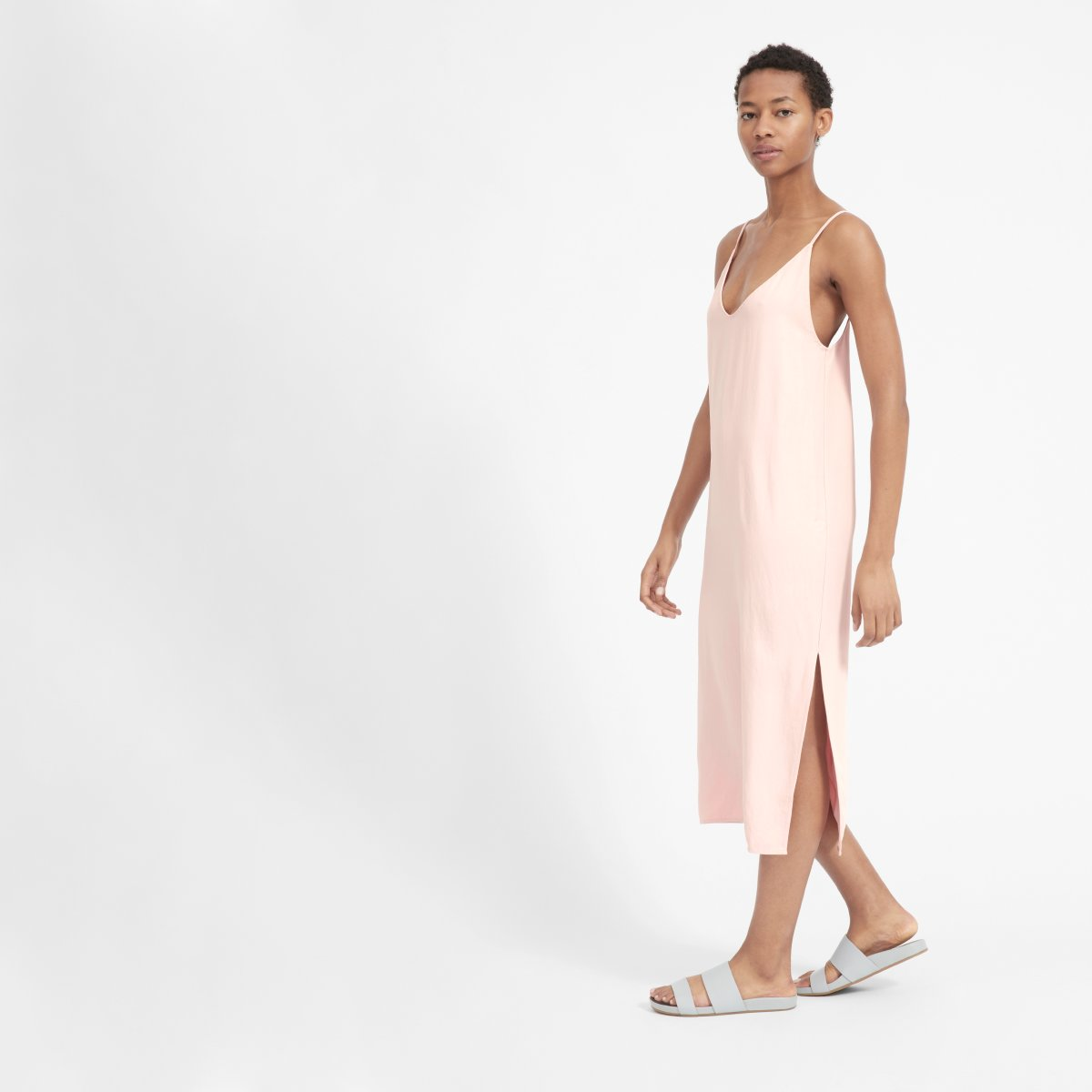 Everlane Dress, $88