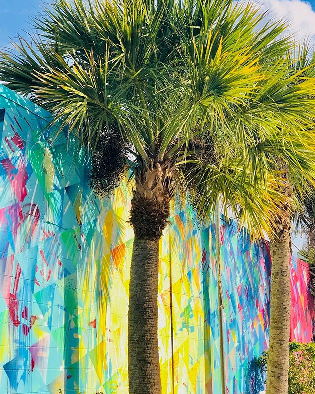 It may be raining 🌧 but all I can see is sunshine ☀️ ________________________________________ #inspo #inspired #palmtrees #tropical #warmheart #artistpalette #brightcolors #fresh #behappy #bepresent #optimistic #liveyourlife #artistview