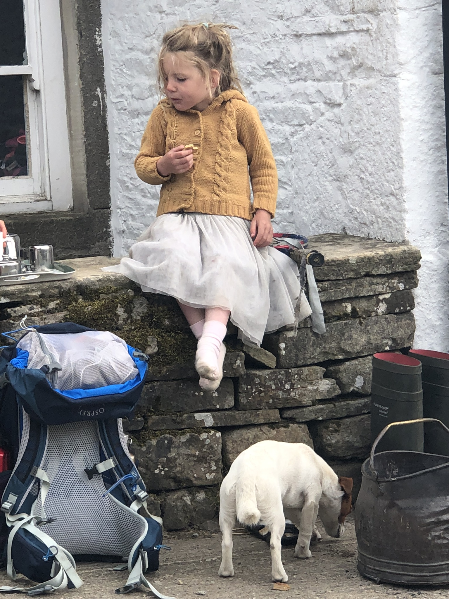 Young Clemy Owen shares a scone with guests as her dog happily picks up the scraps.