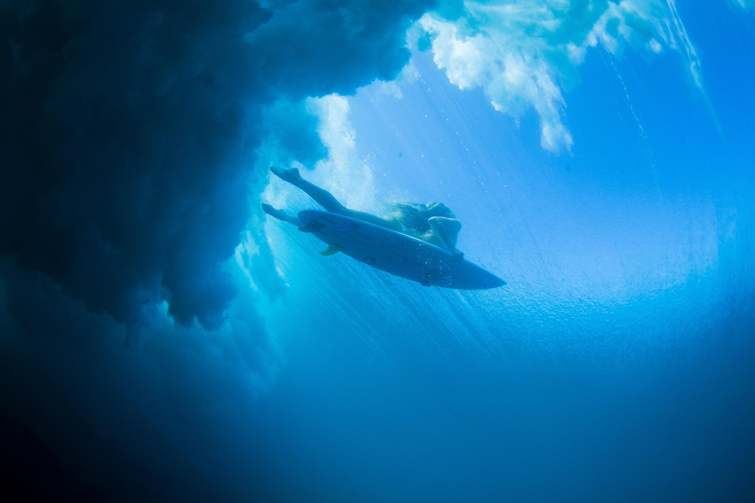 brianbielmann_underwater_hawaii_1516888.jpg