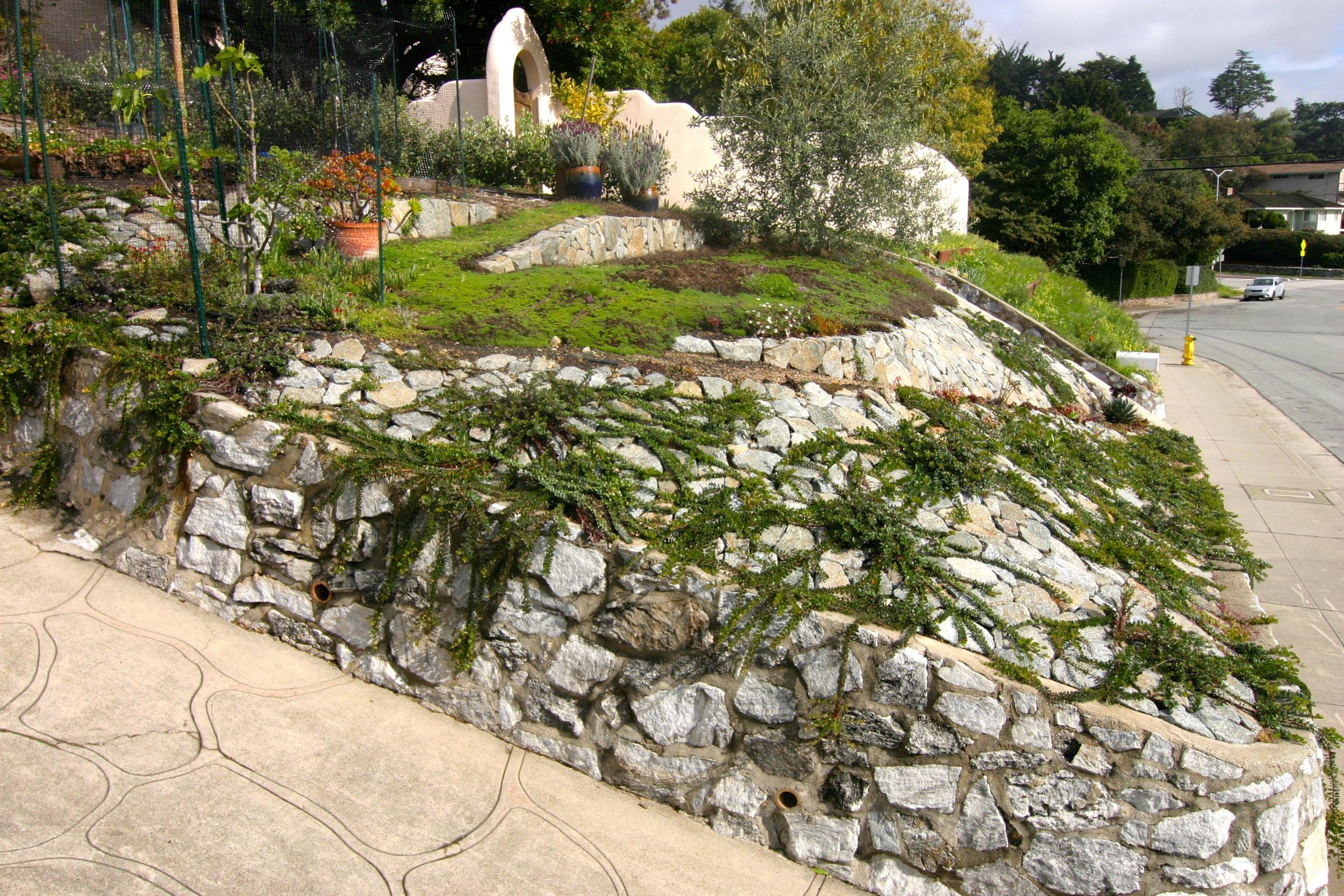 Garden Escalona 2.jpg
