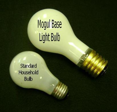 MogulBulb.jpg