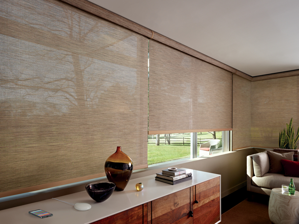 Hunter Douglas Motor 4.jpeg
