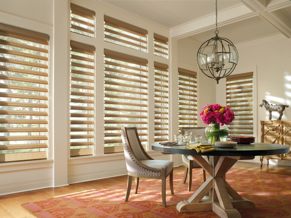 Pirouette Window Shades - St. Louis, Missouri
