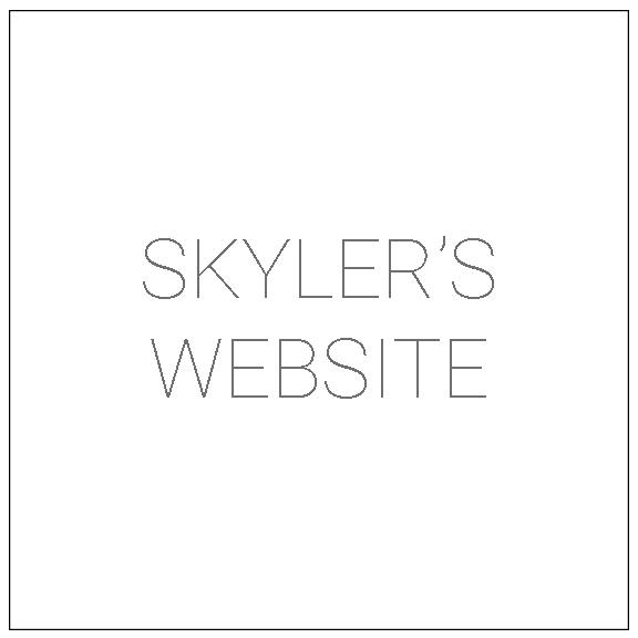 SK Web Thumbnail.jpg