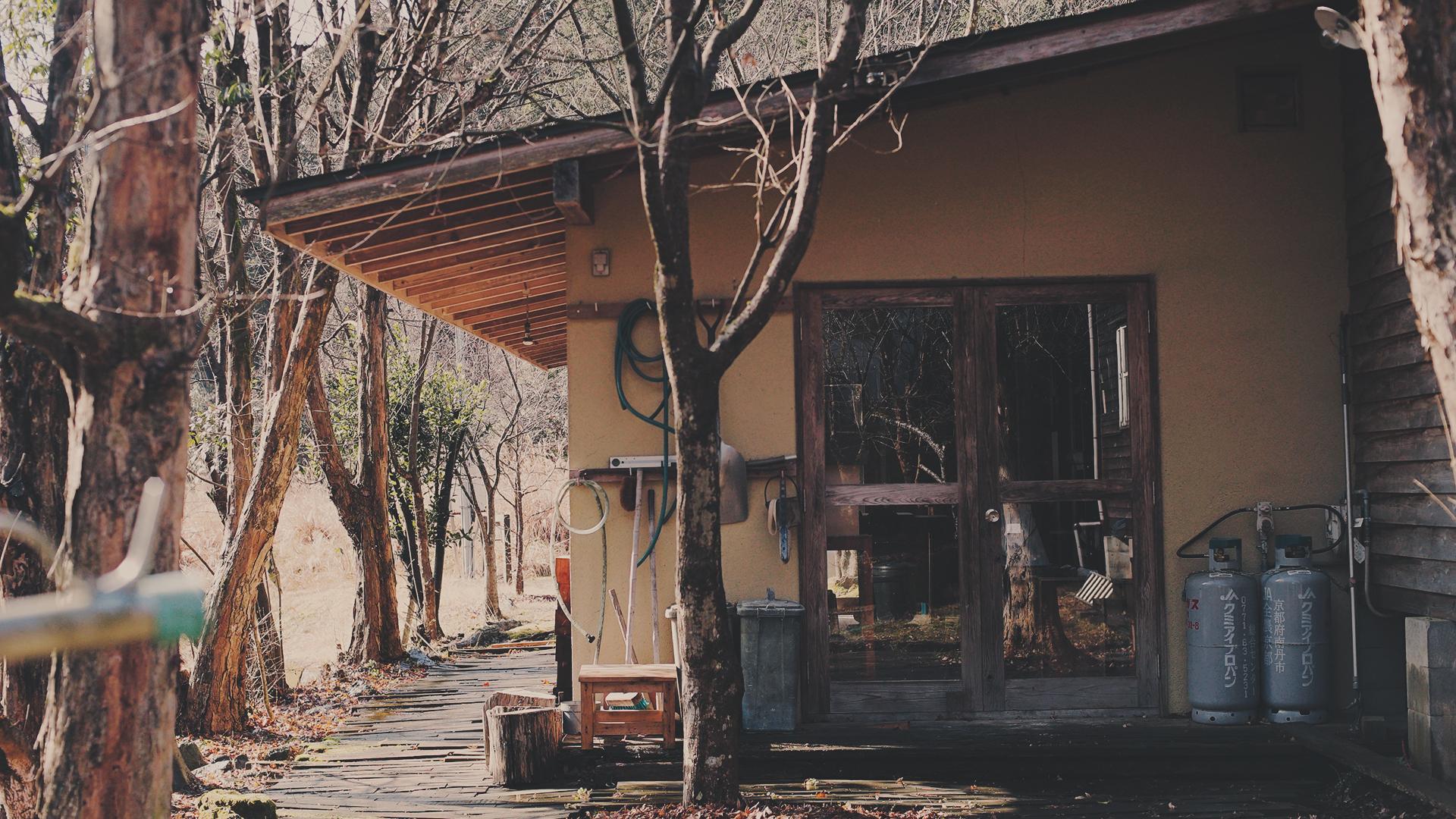 Tanuki_07.jpg