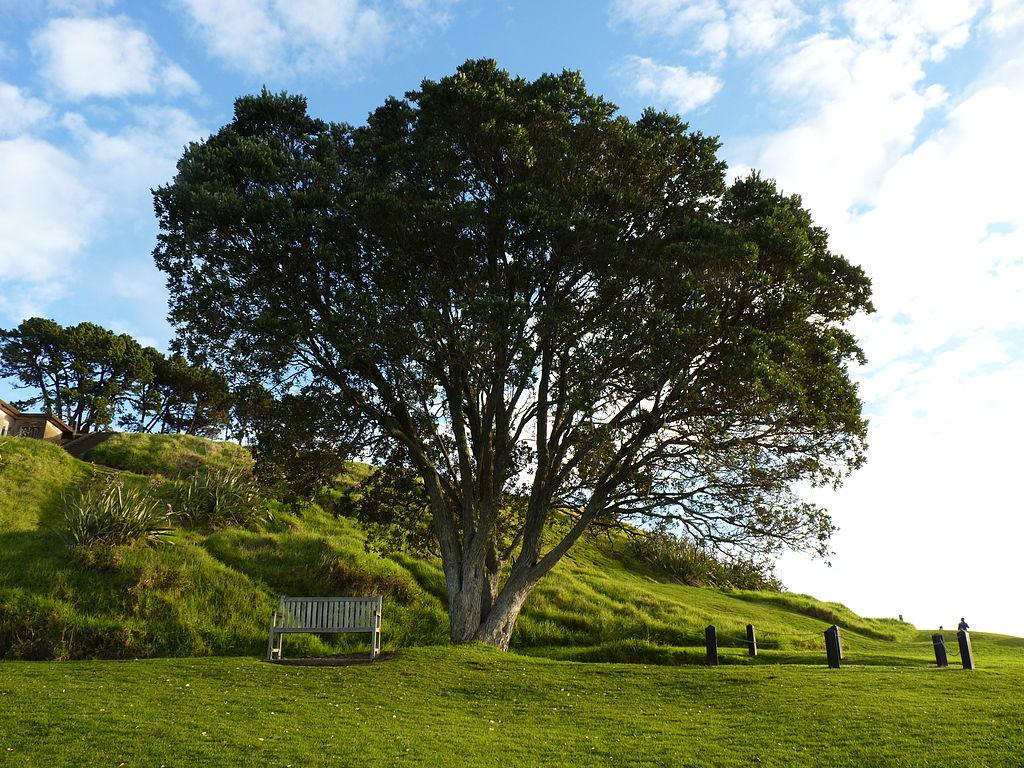 1024px-Auckland,_Devonport,_Hauraki_Gulf_Maritime_Park_(4).JPG