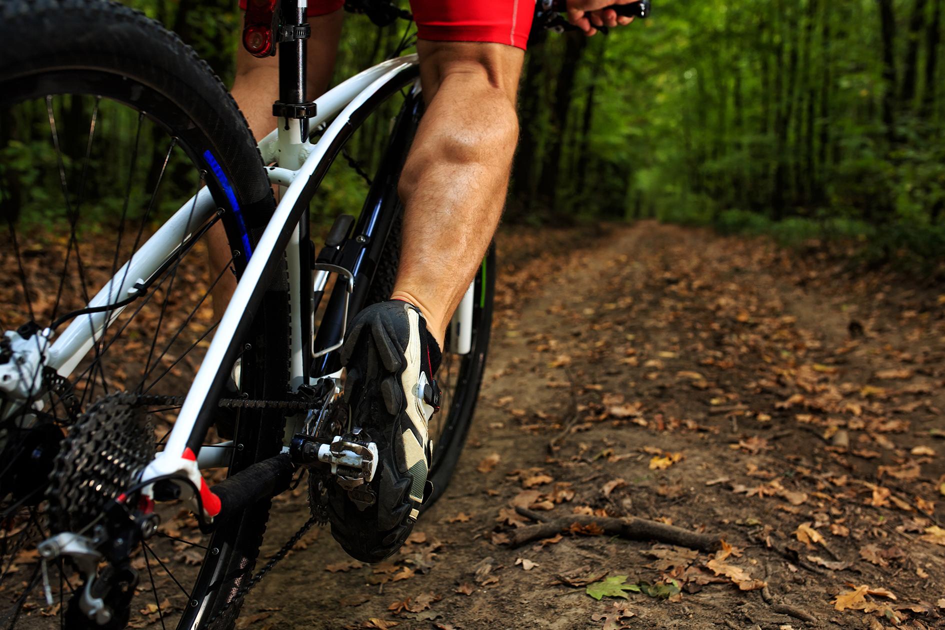 Trail Day mountain Bike rider.jpg