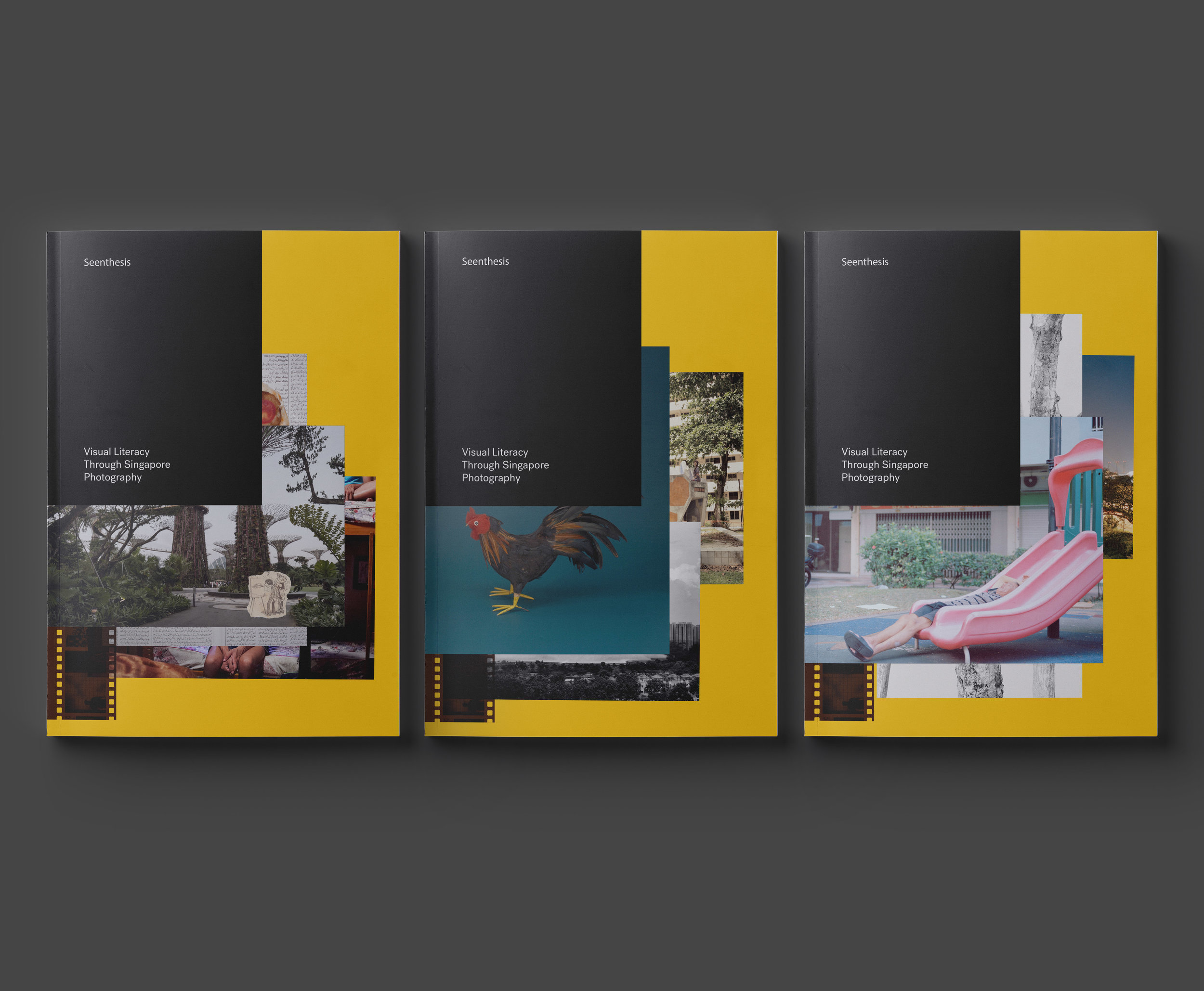 Variations of the front cover of 'Seenthesis: Visual Literacy through Singapore Photography'. Image courtesy of DECK Singapore.