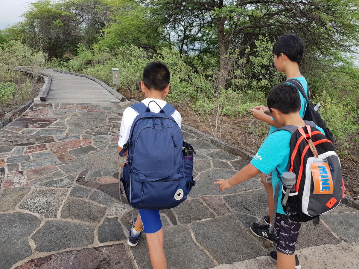 Hawaii-Blog-13.jpg