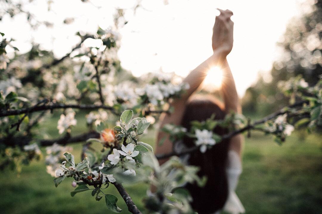 Omenapuutarha_väri_insta34.jpg