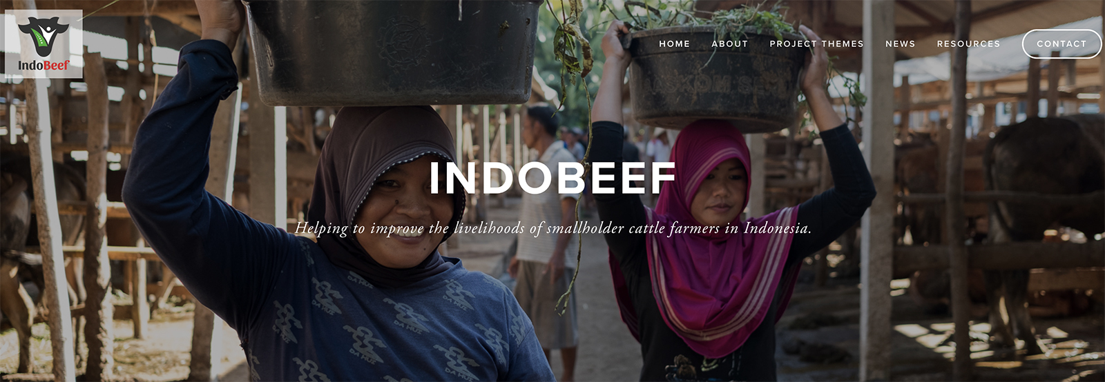 IndoBeef website.jpg