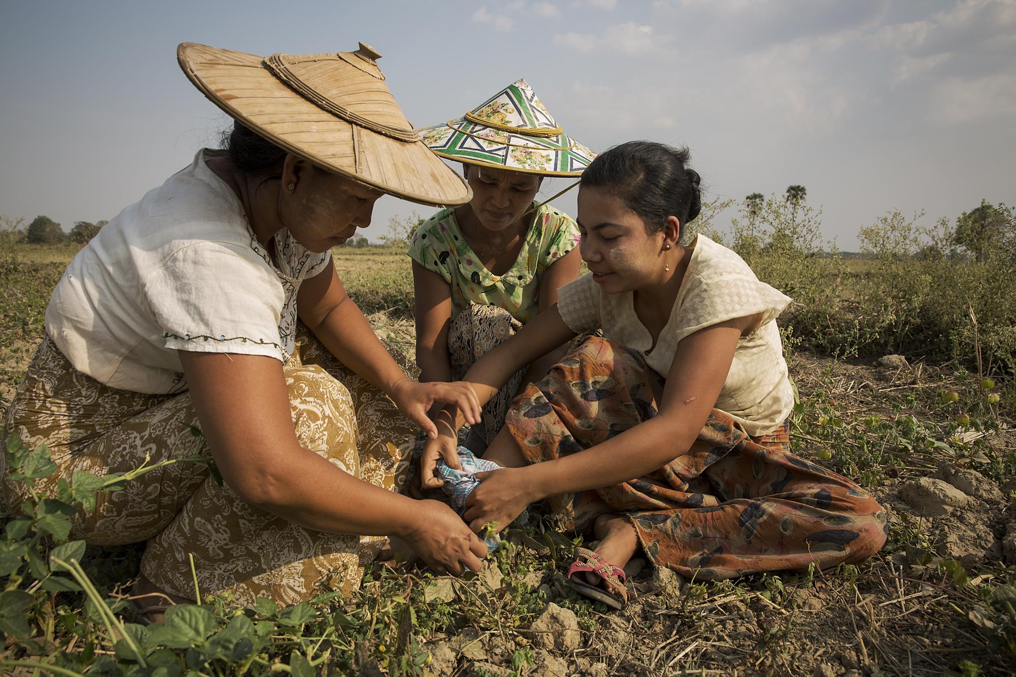 Myanmar-ARC-website24.JPG