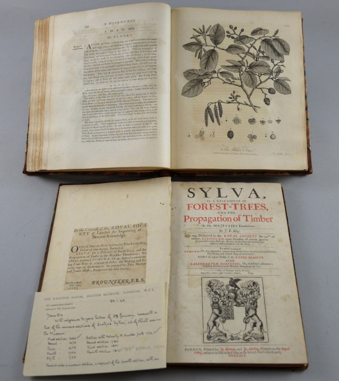 Evelyn, John.  Sylva, or a Discourse of Forest-Trees, and the Propagation of Timber in His Majesties Dominions . London: Jo. Martyn and Ja. Allestry, Printers to the Royal Society, 1664. Image source:    Ewbank's