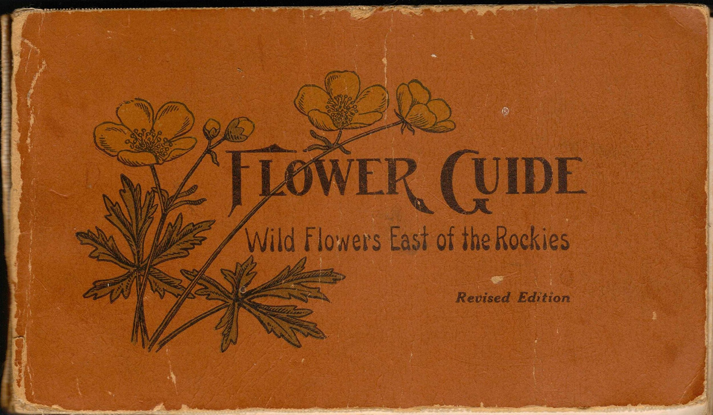 Reed, Chester A.  Flower Guide, Wild Flowers East of the Rockies . Doubleday, Paige & Co., 1926. Image source:    Amazon