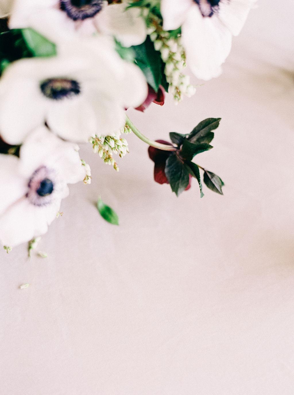 Nikki Santerre Photography