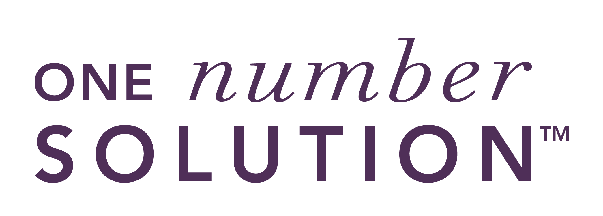 One Number Solution Logo for BUSINESS-03.png