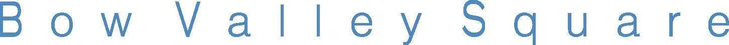 bvs logo.jpg