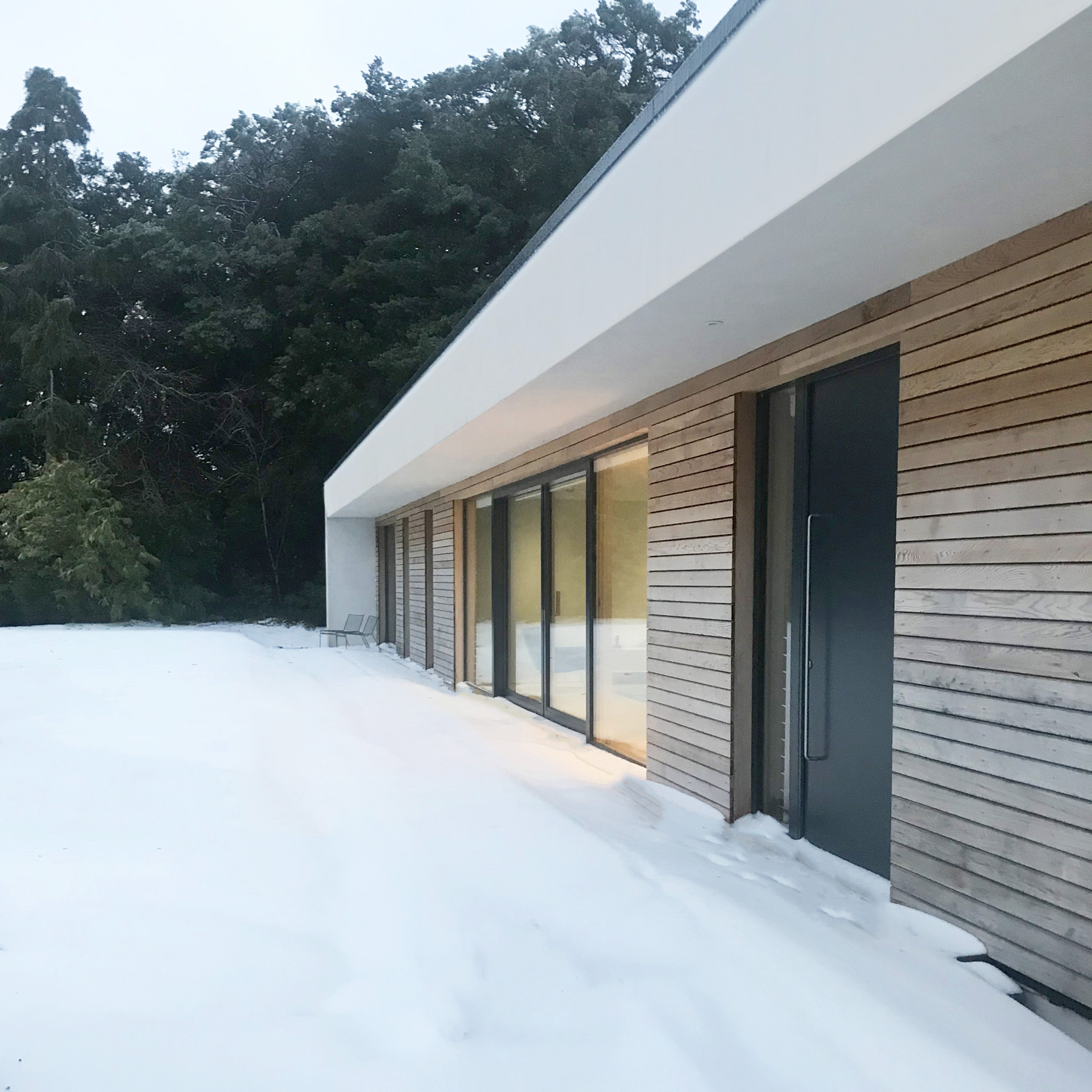 2. Ha-Ha in the snow_TR.jpg