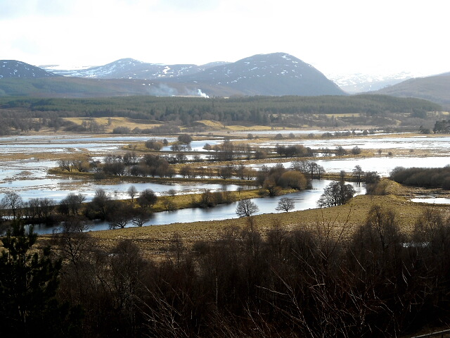 RSPB inch Marshes - Insh Marshes covers 10 square kilometres of the River Spey floodplain between Kingussie and Kincraig. It is a bird lovers paradise with waders including curlew, lapwing, redshank and snipe. Find out more about the marshes here.Image: Iain Thompson