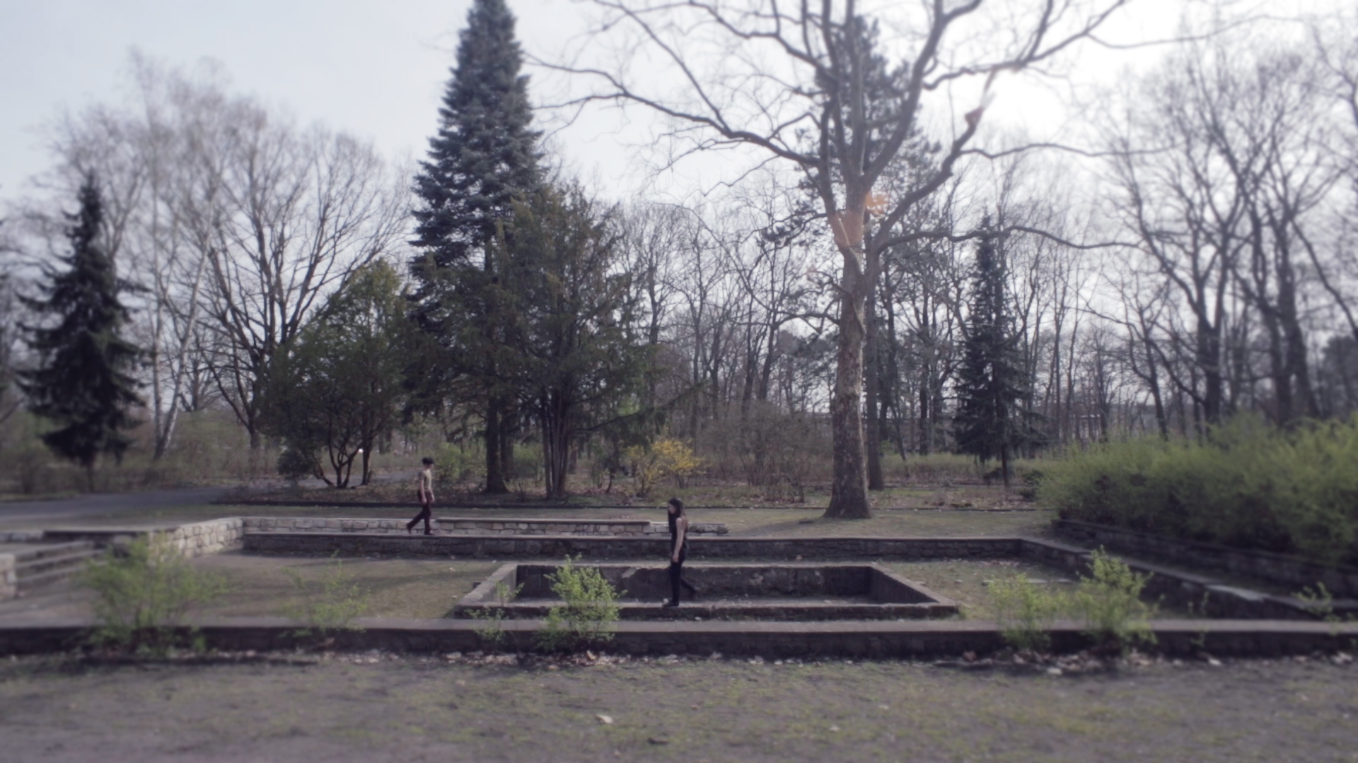 FORM Commissioned Artist Francesca Frewer Film  Winterfeldplatz and elswehere .jpg
