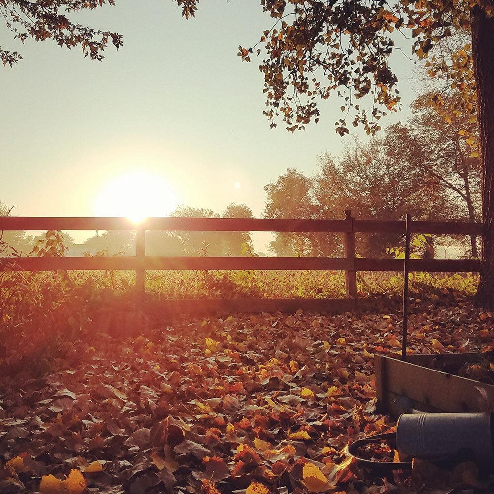 fall-sunrise.jpg