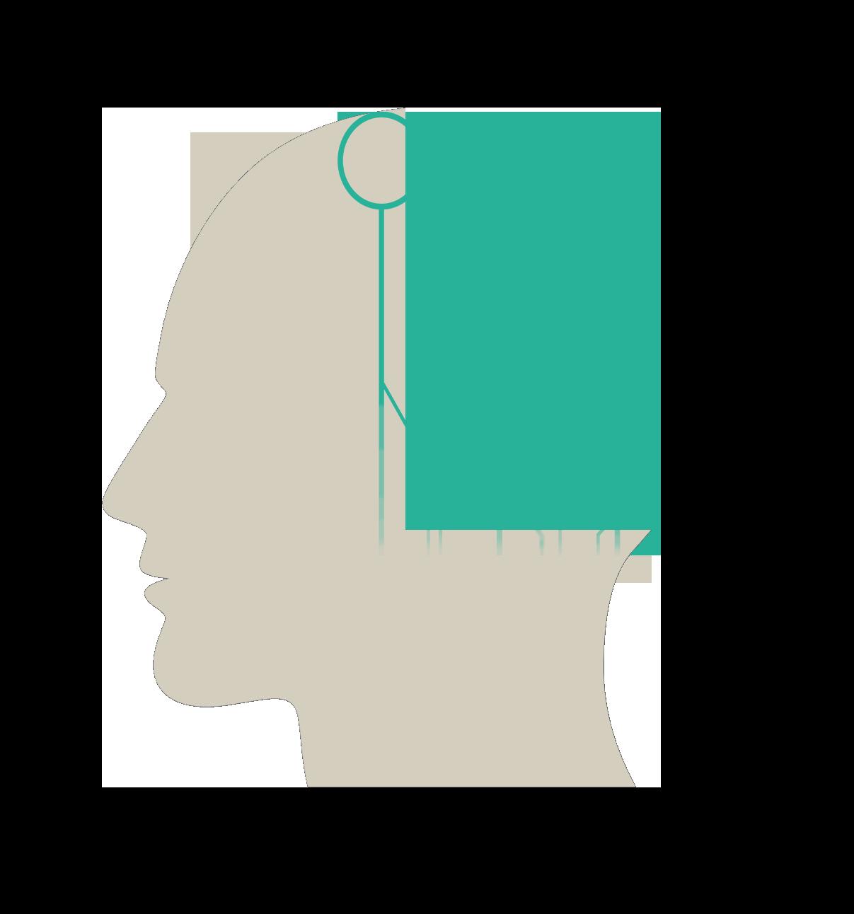 head neural network 2.png