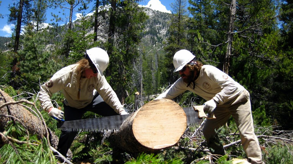 Conservation Corps Members
