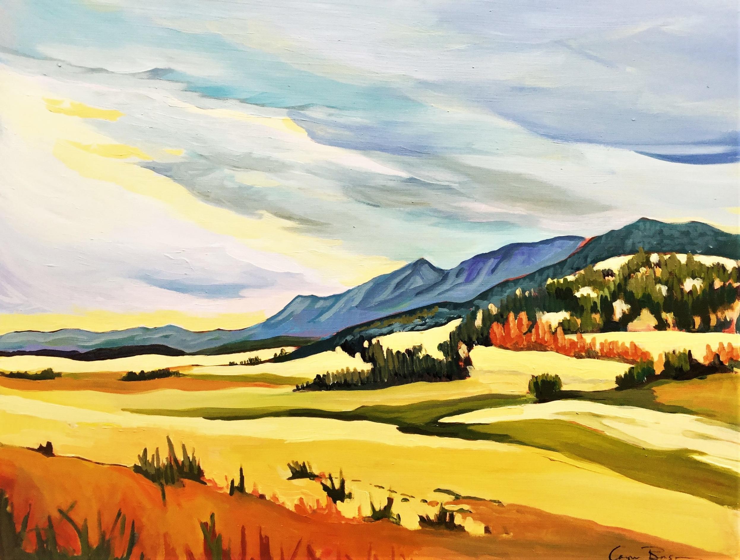 Prairie Meets Mountain 16x20 $600