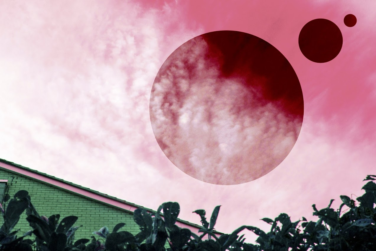a world without pink3eddz.jpg