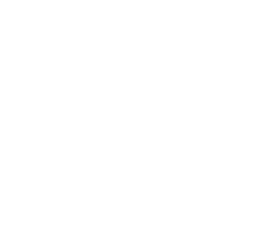 Padron Flooring_01_LogoBrand_White_PF_10262015.png