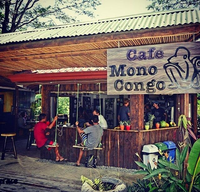 Cafe Mono Congo Dominical.jpg